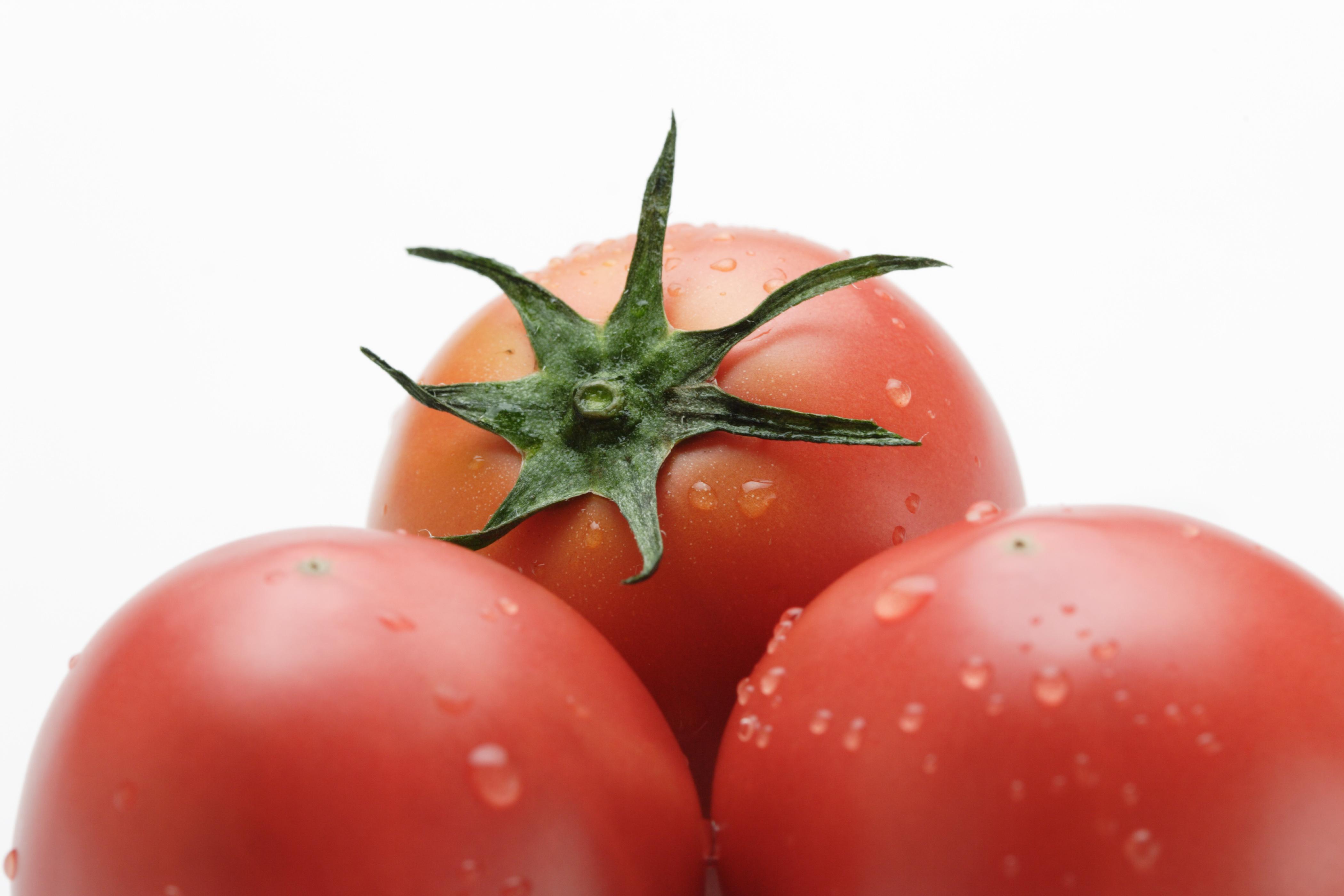 トマト 野菜だし